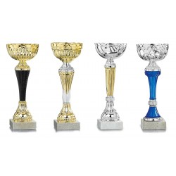 LOT DE 12 COUPES